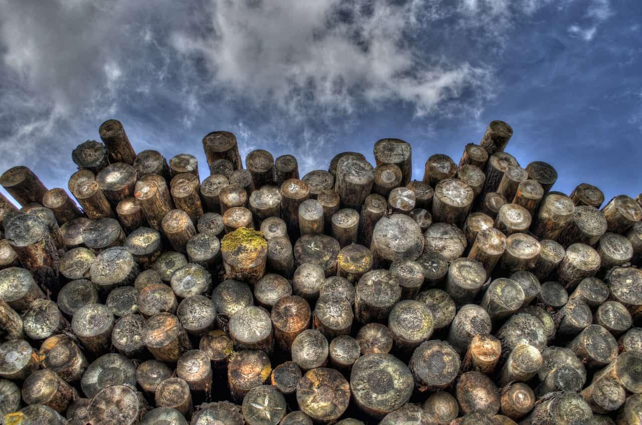 logs-498538_1280